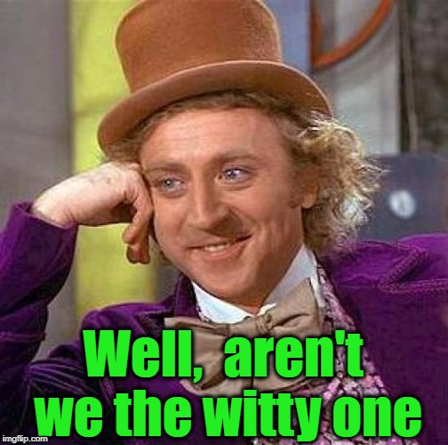 Creepy Condescending Wonka Meme | Well,  aren't we the witty one | image tagged in memes,creepy condescending wonka | made w/ Imgflip meme maker