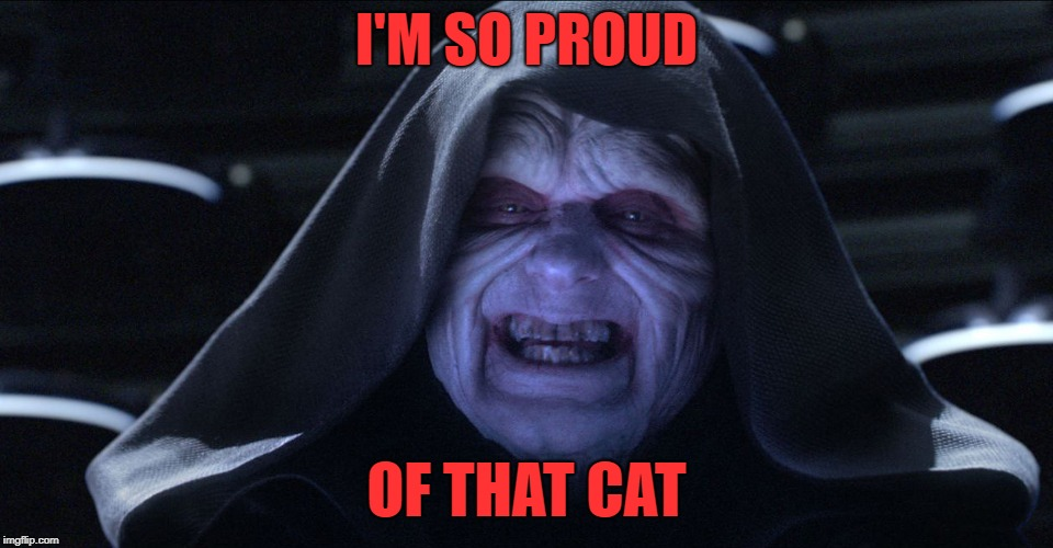 Star wars emporer | I'M SO PROUD OF THAT CAT | image tagged in star wars emporer | made w/ Imgflip meme maker