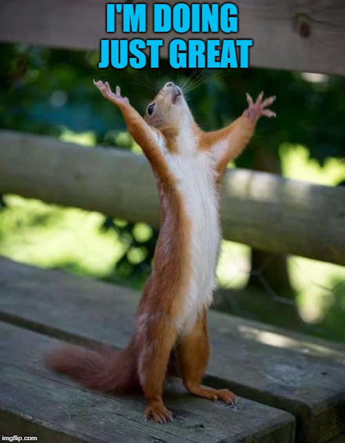 Happy Squirrel | I'M DOING JUST GREAT | image tagged in happy squirrel | made w/ Imgflip meme maker