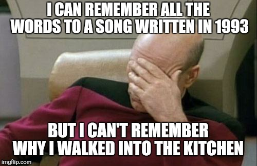 Dam it | I CAN REMEMBER ALL THE WORDS TO A SONG WRITTEN IN 1993 BUT I CAN'T REMEMBER WHY I WALKED INTO THE KITCHEN | image tagged in memes,captain picard facepalm,old people,funny,special kind of stupid | made w/ Imgflip meme maker