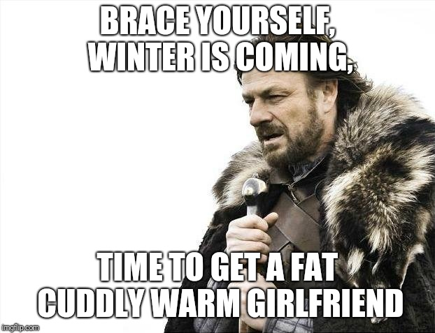 Skinny girls aren't so warm and cuddly | BRACE YOURSELF, WINTER IS COMING, TIME TO GET A FAT CUDDLY WARM GIRLFRIEND | image tagged in memes,brace yourselves x is coming,cuddling,warm | made w/ Imgflip meme maker