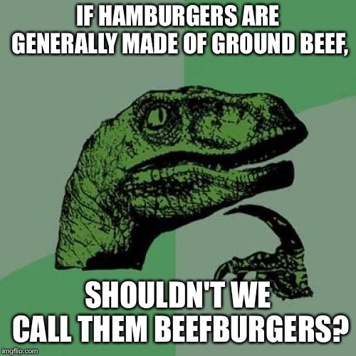 Philosoraptor Meme | IF HAMBURGERS ARE GENERALLY MADE OF GROUND BEEF, SHOULDN'T WE CALL THEM BEEFBURGERS? | image tagged in memes,philosoraptor | made w/ Imgflip meme maker