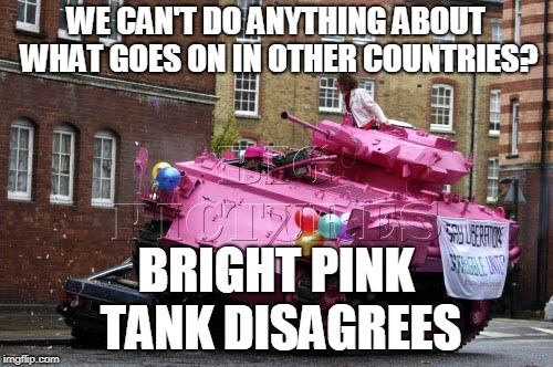 WE CAN'T DO ANYTHING ABOUT WHAT GOES ON IN OTHER COUNTRIES? BRIGHT PINK TANK DISAGREES | made w/ Imgflip meme maker