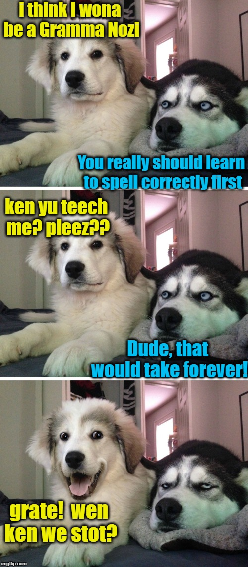 Not everyone can be a Grammar Nazi! | i think I wona be a Gramma Nozi You really should learn to spell correctly first ken yu teech me? pleez?? Dude, that would take forever! gra | image tagged in smart dog,dumb dog | made w/ Imgflip meme maker