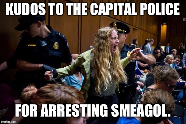 Smeagol arrested.  | KUDOS TO THE CAPITAL POLICE FOR ARRESTING SMEAGOL. | image tagged in scotus,brett kavanaugh,the one ring,smeagol | made w/ Imgflip meme maker
