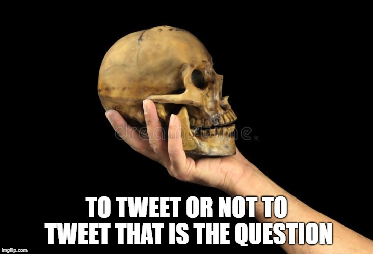 Hamlet | TO TWEET OR NOT TO TWEET THAT IS THE QUESTION | image tagged in hamlet | made w/ Imgflip meme maker