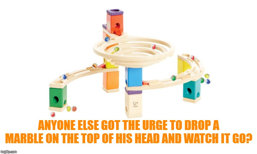 ANYONE ELSE GOT THE URGE TO DROP A MARBLE ON THE TOP OF HIS HEAD AND WATCH IT GO? | made w/ Imgflip meme maker