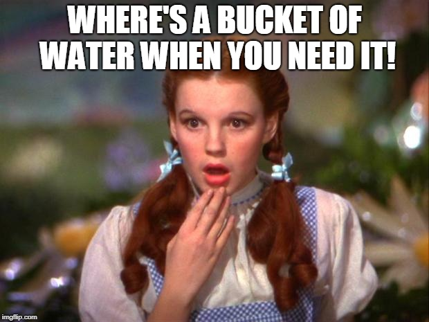 Dorothy | WHERE'S A BUCKET OF WATER WHEN YOU NEED IT! | image tagged in dorothy | made w/ Imgflip meme maker