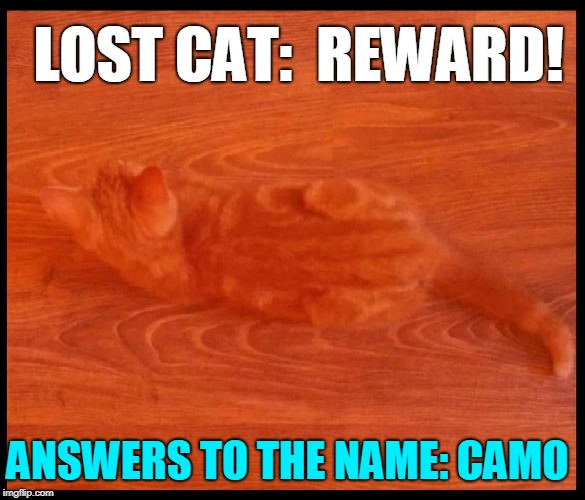reward poster images imgflip