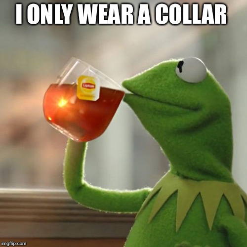 But Thats None Of My Business Meme | I ONLY WEAR A COLLAR | image tagged in memes,but thats none of my business,kermit the frog | made w/ Imgflip meme maker