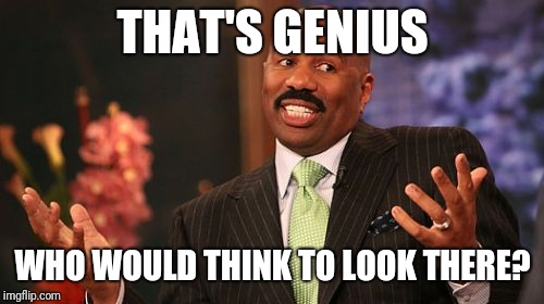 Steve Harvey Meme | THAT'S GENIUS WHO WOULD THINK TO LOOK THERE? | image tagged in memes,steve harvey | made w/ Imgflip meme maker