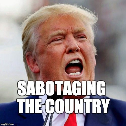 Sabotaging the country. | SABOTAGING THE COUNTRY | image tagged in trump,donald trump,fraud,con artist | made w/ Imgflip meme maker