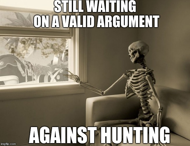 You Name This | STILL WAITING ON A VALID ARGUMENT AGAINST HUNTING | image tagged in skeleton window,memes | made w/ Imgflip meme maker
