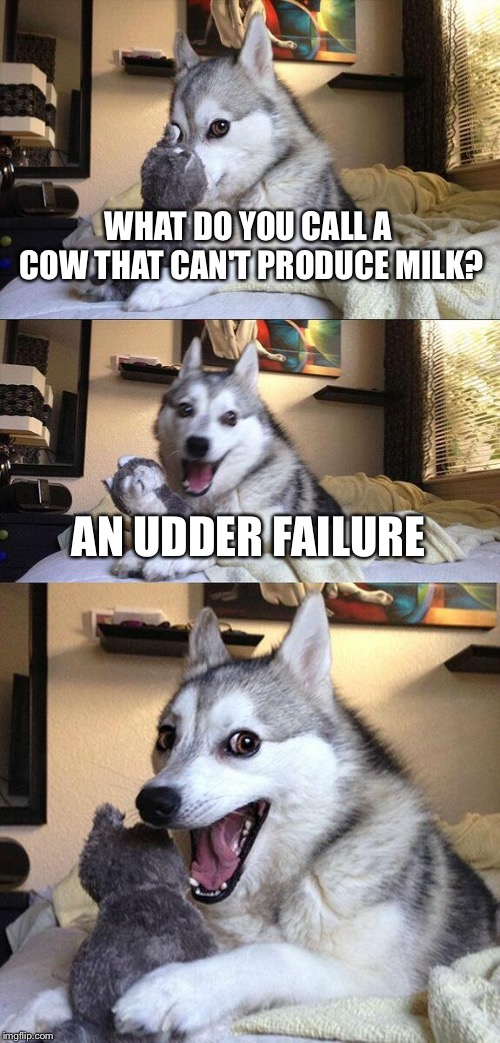 Bad Pun Dog Meme | WHAT DO YOU CALL A COW THAT CAN'T PRODUCE MILK? AN UDDER FAILURE | image tagged in memes,bad pun dog | made w/ Imgflip meme maker