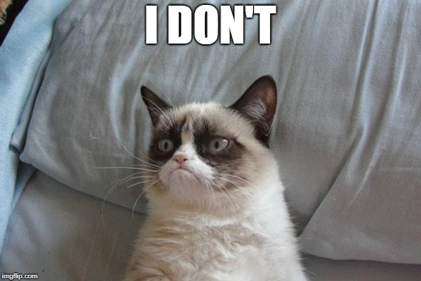 Grumpy Cat Bed Meme | I DON'T | image tagged in memes,grumpy cat bed,grumpy cat | made w/ Imgflip meme maker