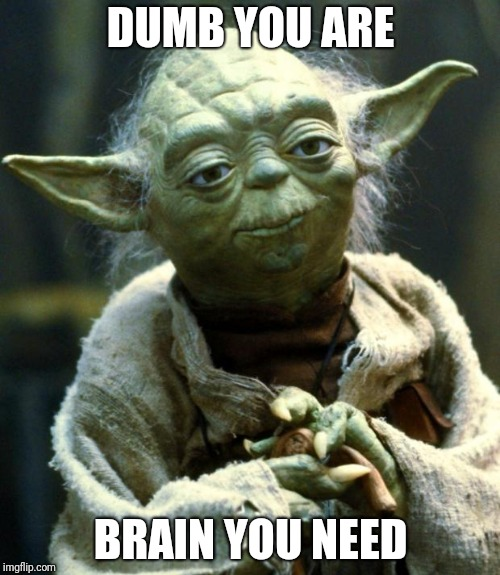 Star Wars Yoda Meme | DUMB YOU ARE BRAIN YOU NEED | image tagged in memes,star wars yoda | made w/ Imgflip meme maker