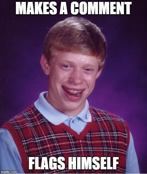 Bad Luck Brian Meme | MAKES A COMMENT FLAGS HIMSELF | image tagged in memes,bad luck brian | made w/ Imgflip meme maker