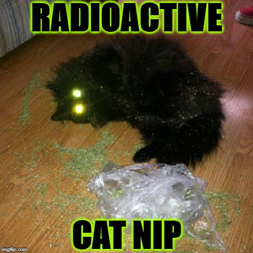 NUCLEAR | RADIOACTIVE CAT NIP | image tagged in nuclear | made w/ Imgflip meme maker