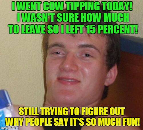 Cow tipping!  | I WENT COW TIPPING TODAY! I WASN'T SURE HOW MUCH TO LEAVE SO I LEFT 15 PERCENT! STILL TRYING TO FIGURE OUT WHY PEOPLE SAY IT'S SO MUCH FUN! | image tagged in memes,10 guy,cow tipping,special kind of stupid | made w/ Imgflip meme maker