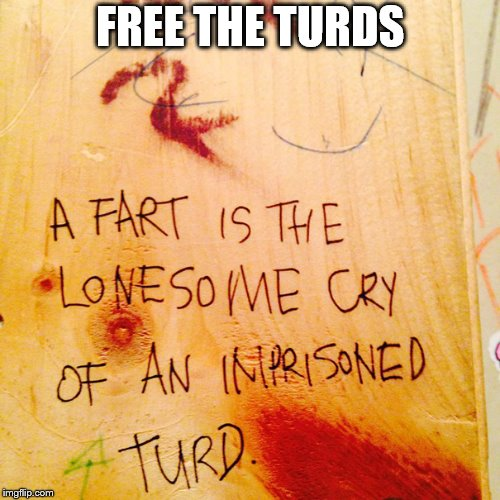 you will never fart the same | FREE THE TURDS | image tagged in fart jokes,prison,graffiti | made w/ Imgflip meme maker