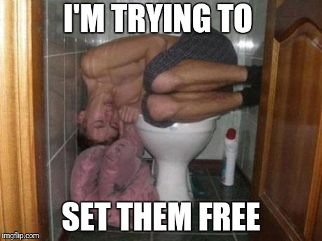 Sleeping on toilet | I'M TRYING TO SET THEM FREE | image tagged in sleeping on toilet | made w/ Imgflip meme maker