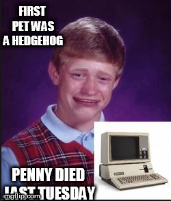 Bad luck Cryin. | FIRST PET WAS A HEDGEHOG PENNY DIED LAST TUESDAY | image tagged in bad luck brian,cryin,hedgehog,penny,died,last | made w/ Imgflip meme maker
