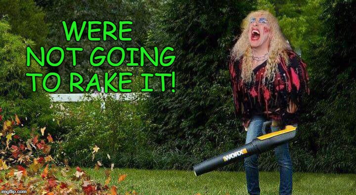 yard work | WERE NOT GOING TO RAKE IT! | image tagged in leaf blower,funny | made w/ Imgflip meme maker