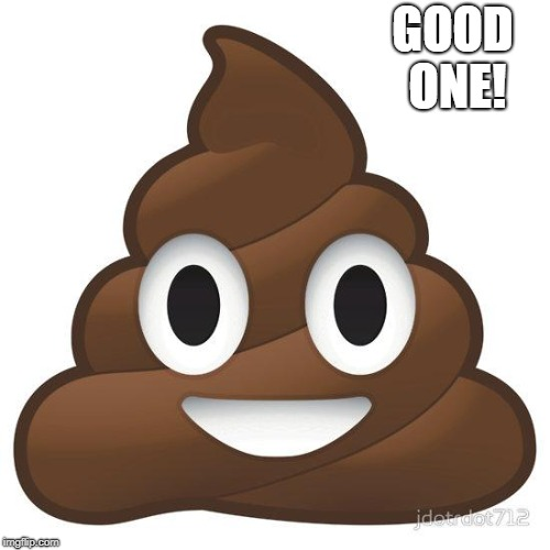 poop | GOOD ONE! | image tagged in poop | made w/ Imgflip meme maker