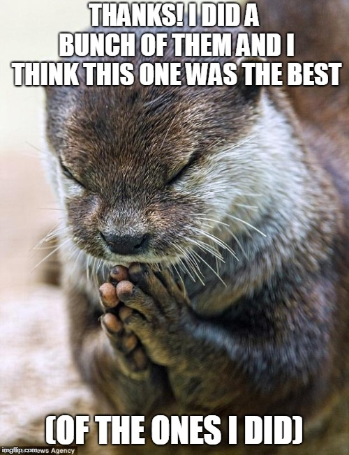 Thank you Lord Otter | THANKS! I DID A BUNCH OF THEM AND I THINK THIS ONE WAS THE BEST (OF THE ONES I DID) | image tagged in thank you lord otter | made w/ Imgflip meme maker