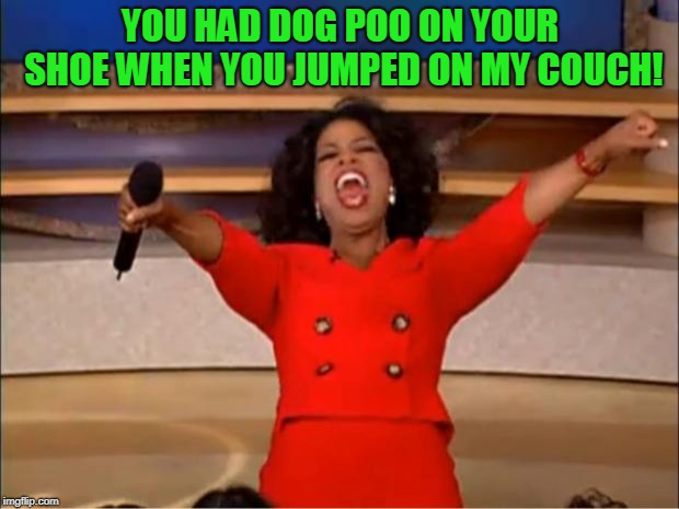 Oprah You Get A Meme | YOU HAD DOG POO ON YOUR SHOE WHEN YOU JUMPED ON MY COUCH! | image tagged in memes,oprah you get a | made w/ Imgflip meme maker