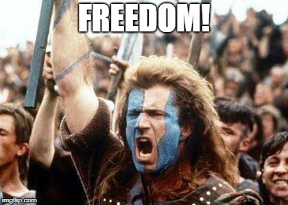 William Wallace | FREEDOM! | image tagged in william wallace | made w/ Imgflip meme maker