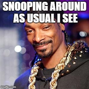 Snoop dogg |  SNOOPING AROUND AS USUAL I SEE | image tagged in snoop dogg | made w/ Imgflip meme maker