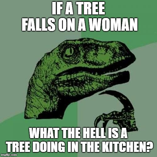 Philosoraptor Meme | IF A TREE FALLS ON A WOMAN WHAT THE HELL IS A TREE DOING IN THE KITCHEN? | image tagged in memes,philosoraptor | made w/ Imgflip meme maker