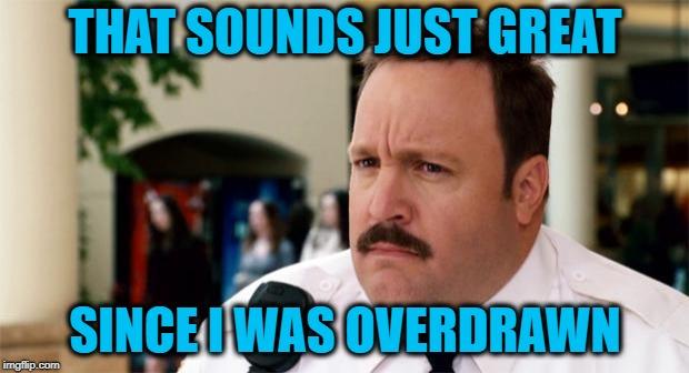 Paul Blart Unsure | THAT SOUNDS JUST GREAT SINCE I WAS OVERDRAWN | image tagged in paul blart unsure | made w/ Imgflip meme maker