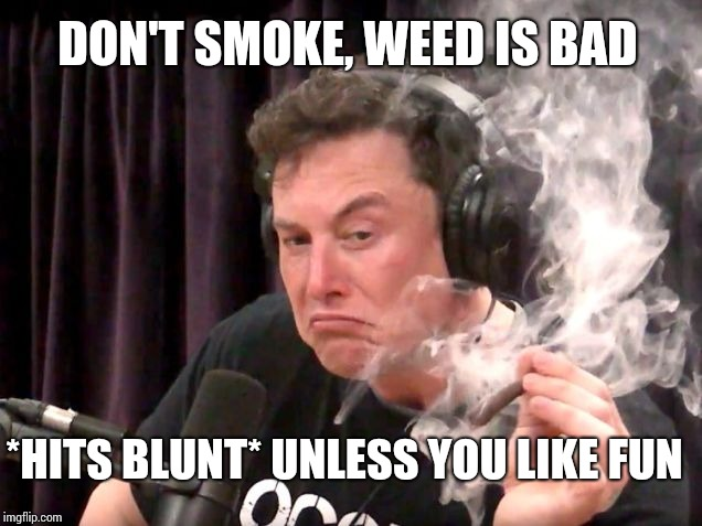 Elon Musk Hits Blunt 2 | DON'T SMOKE, WEED IS BAD *HITS BLUNT* UNLESS YOU LIKE FUN | image tagged in elon musk hits blunt 2,elon musk,hits blunt | made w/ Imgflip meme maker