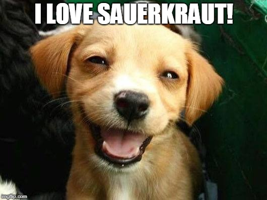 smiling dog | I LOVE SAUERKRAUT! | image tagged in smiling dog | made w/ Imgflip meme maker