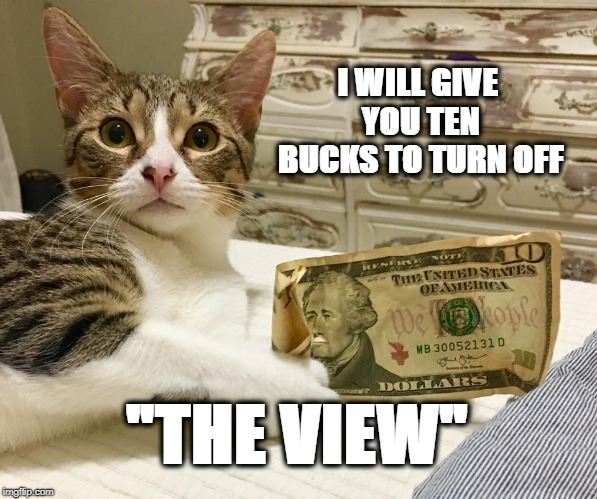 "Turn Off ""The View"" 