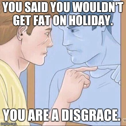 Pointing mirror guy | YOU SAID YOU WOULDN'T GET FAT ON HOLIDAY. YOU ARE A DISGRACE. | image tagged in pointing mirror guy | made w/ Imgflip meme maker