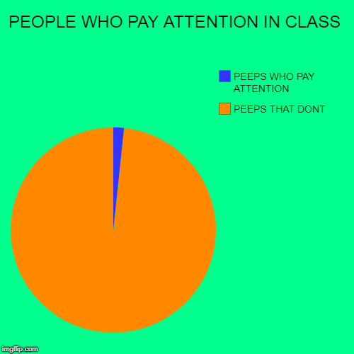 PEOPLE WHO PAY ATTENTION IN CLASS | PEEPS THAT DONT, PEEPS WHO PAY ATTENTION | image tagged in lol | made w/ Imgflip pie chart maker
