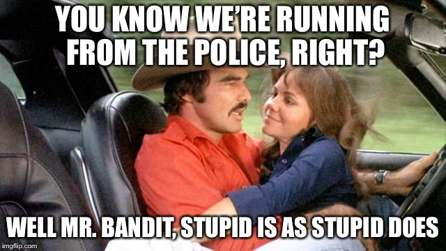 R.I.P. Mr. Bandit | YOU KNOW WE'RE RUNNING FROM THE POLICE, RIGHT? WELL MR. BANDIT, STUPID IS AS STUPID DOES | image tagged in the bandit,burt reynolds,smoky and the bandit,sally fields,memes | made w/ Imgflip meme maker