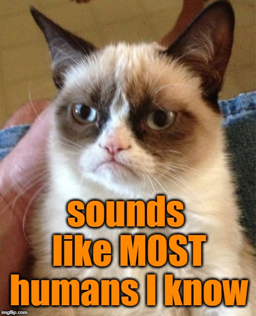 Grumpy Cat Meme | sounds like MOST humans I know | image tagged in memes,grumpy cat | made w/ Imgflip meme maker