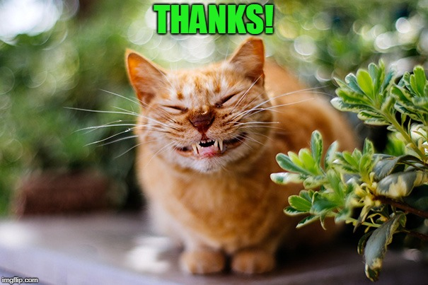 Cat smiling | THANKS! | image tagged in cat smiling | made w/ Imgflip meme maker