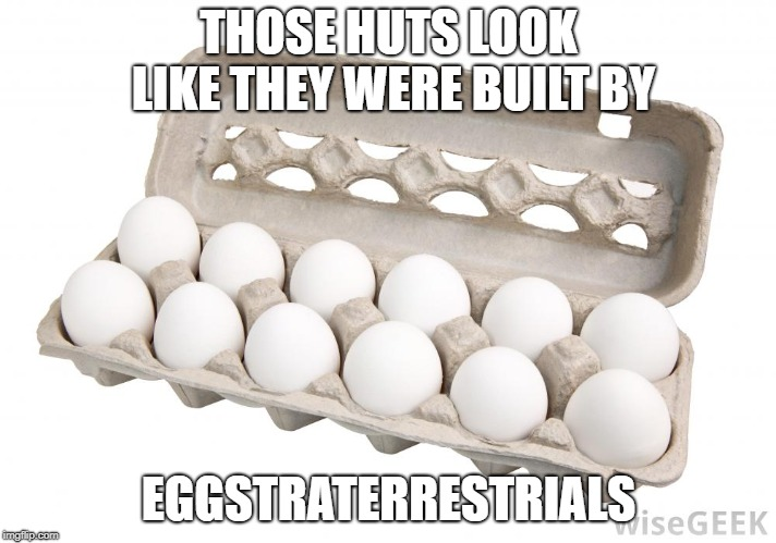 Dozen eggs | THOSE HUTS LOOK LIKE THEY WERE BUILT BY EGGSTRATERRESTRIALS | image tagged in dozen eggs | made w/ Imgflip meme maker