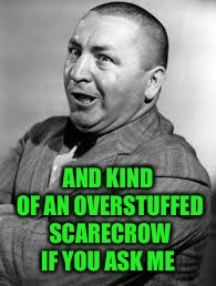 AND KIND OF AN OVERSTUFFED SCARECROW IF YOU ASK ME | made w/ Imgflip meme maker