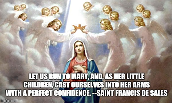 Mother Mary | LET US RUN TO MARY, AND, AS HER LITTLE CHILDREN, CAST OURSELVES INTO HER ARMS WITH A PERFECT CONFIDENCE. --SAINT FRANCIS DE SALES | image tagged in catholic,mother,children,queen,angels,love | made w/ Imgflip meme maker