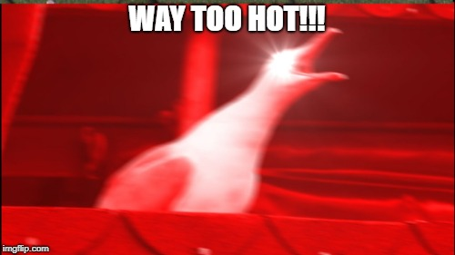 WAY TOO HOT!!! | made w/ Imgflip meme maker