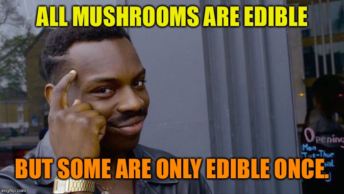 It's true | ALL MUSHROOMS ARE EDIBLE BUT SOME ARE ONLY EDIBLE ONCE. | image tagged in memes,roll safe think about it | made w/ Imgflip meme maker