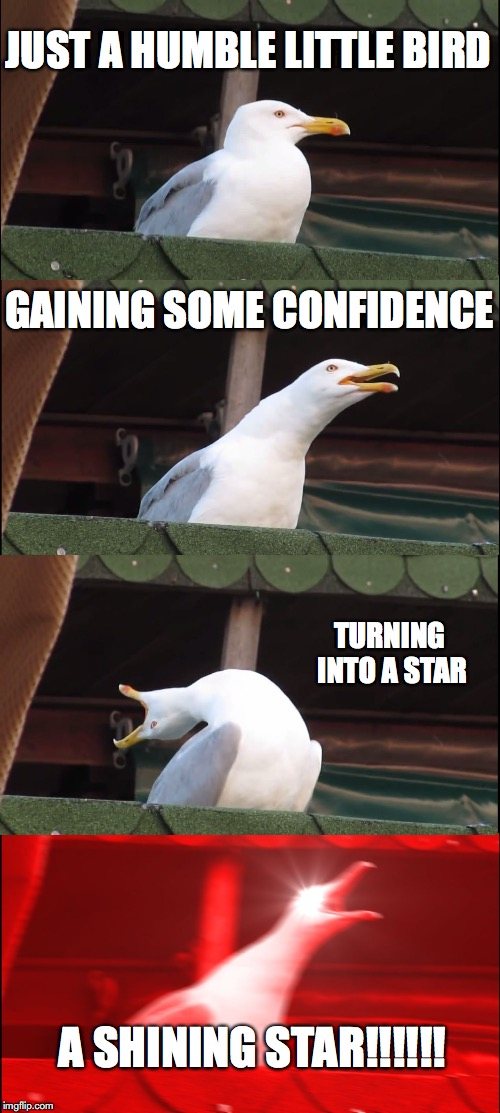 Inhaling Seagull Meme | JUST A HUMBLE LITTLE BIRD GAINING SOME CONFIDENCE TURNING INTO A STAR A SHINING STAR!!!!!! | image tagged in memes,inhaling seagull | made w/ Imgflip meme maker