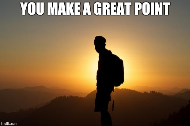Traveler on a Pilgrm Journey | YOU MAKE A GREAT POINT | image tagged in traveler on a pilgrm journey | made w/ Imgflip meme maker