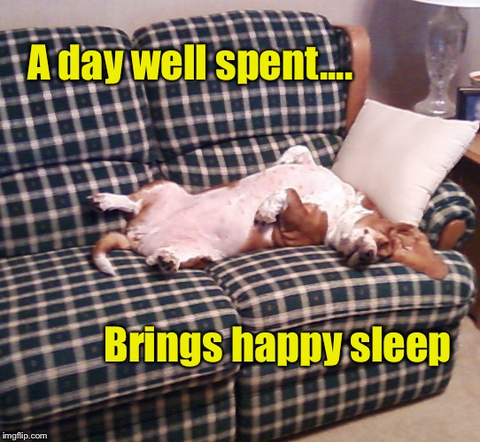 A day well spent  | A day well spent.... Brings happy sleep | image tagged in basset hound,basset life,inspirational,sleep,happy | made w/ Imgflip meme maker